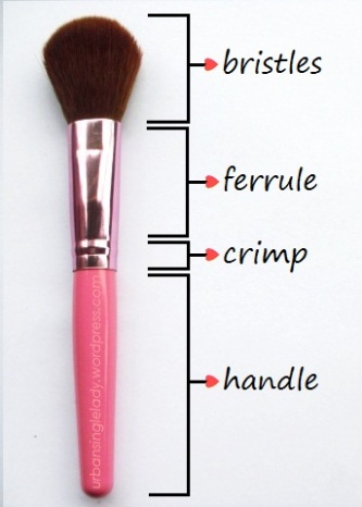 make-up-brush-anatomy